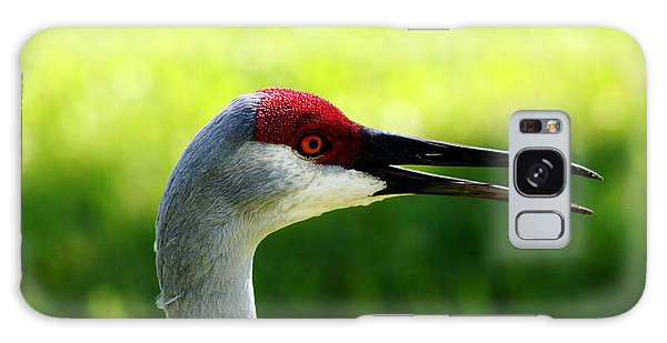 Florida Sandhill Crane Galaxy Case