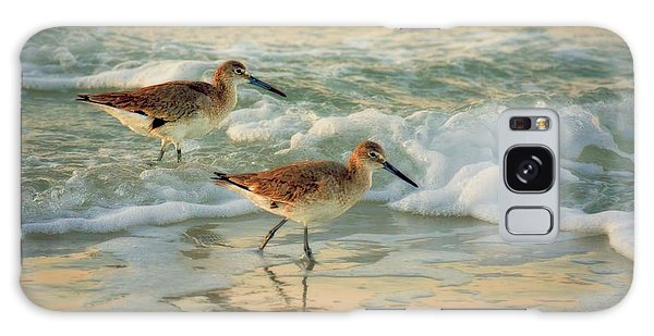 Florida Sandpiper Dawn Galaxy Case