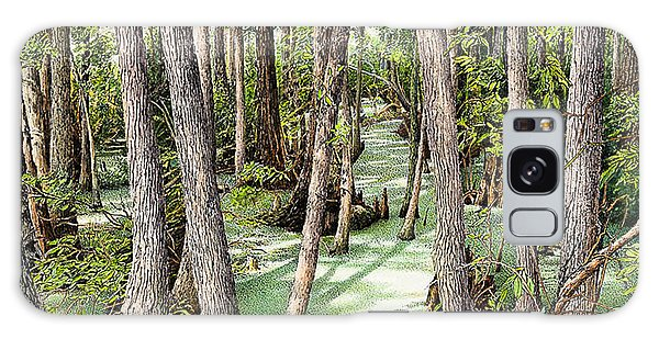 Florida Swamp Galaxy Case