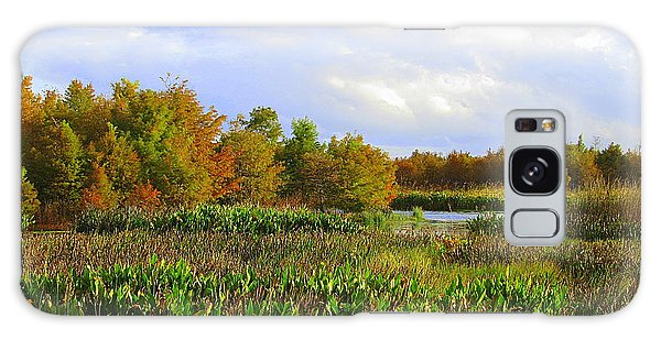 Florida Wetlands August Galaxy Case by David Mckinney