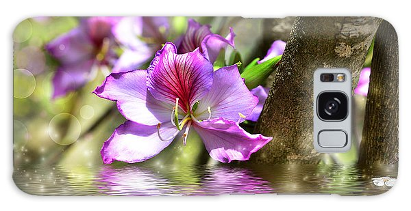 Flower Bauhinia And Simulation Of Water Galaxy Case