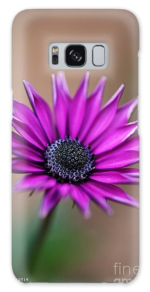 Flower-daisy-purple Galaxy Case