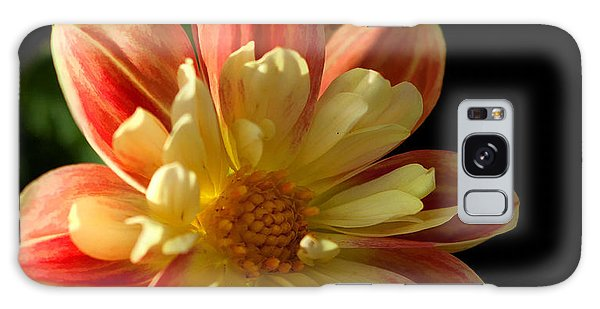 Flower In The Sun Galaxy Case