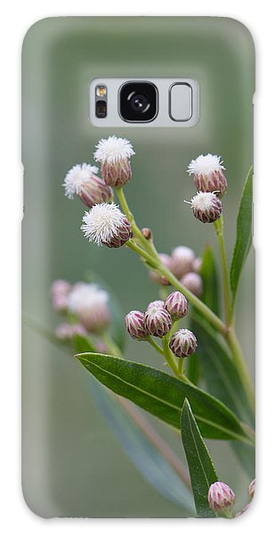 Flower Galaxy Case