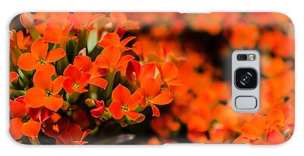 Flower Macro 1 Galaxy Case