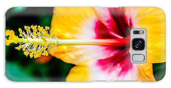 Flower Macro 2 Galaxy Case