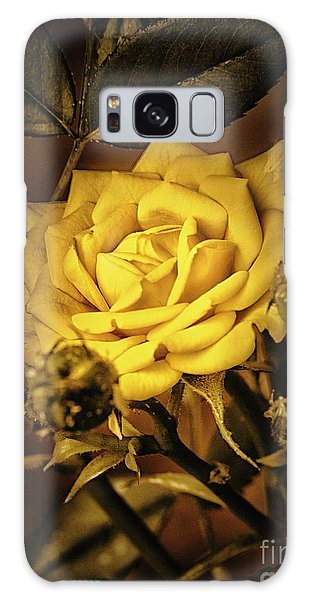 Flower Of Friendship  ... Galaxy Case by Chuck Caramella