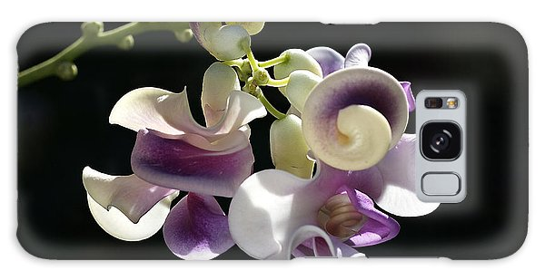 Flower-snail Flower Galaxy Case by Joy Watson