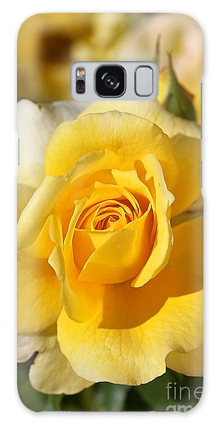 Flower-yellow Rose-delight Galaxy Case by Joy Watson