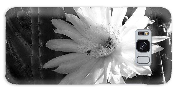 Flowering Cactus 1 Bw Galaxy Case