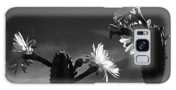 Flowering Cactus 4 Bw Galaxy Case
