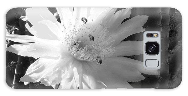 Flowering Cactus 5 Bw Galaxy Case
