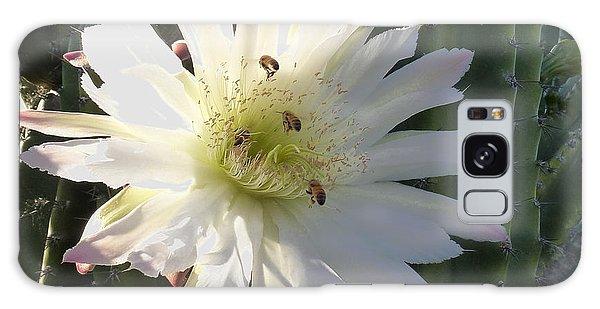 Flowering Cactus 5 Galaxy Case