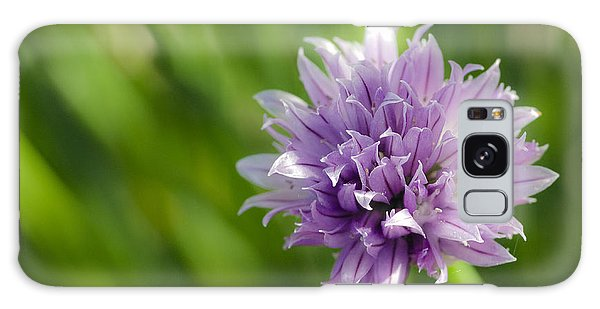 Flowering Chive Galaxy Case