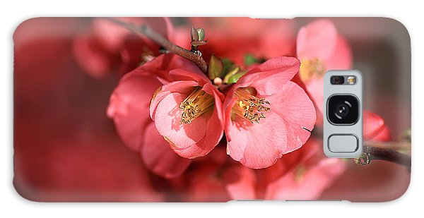 Flowering Quince Galaxy Case by Joy Watson
