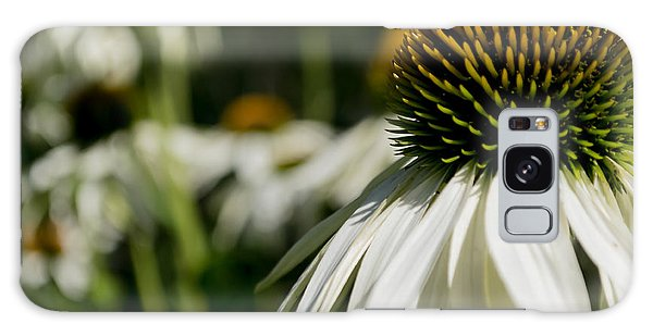 Flowers - Echinacea White Swan Galaxy Case