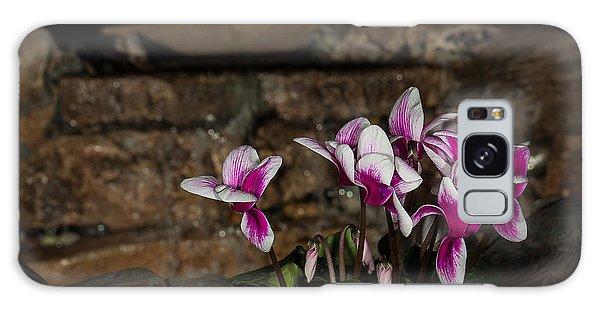 Flowers With Waterfall Backdrop Galaxy Case by Len Romanick