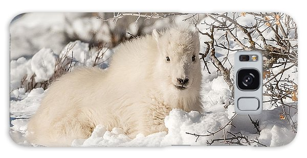 Fluffy Kid On The Mountain Galaxy Case by Yeates Photography