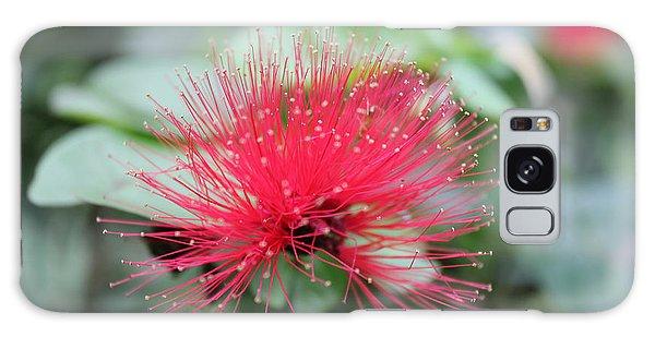 Fluffy Pink Flower Galaxy Case by Sergey Lukashin