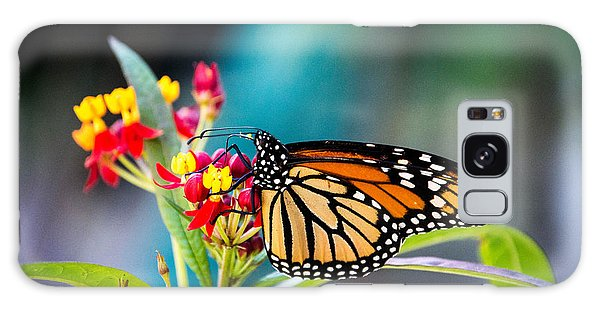 Flutter By Galaxy Case