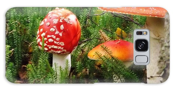 Fly Agaric Mushroom Galaxy Case
