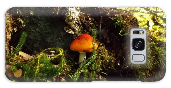 Fly Agaric Mushroom On Forest Floor Galaxy Case