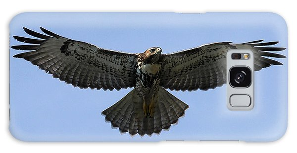 Flying Free - Red-tailed Hawk Galaxy Case by Meg Rousher