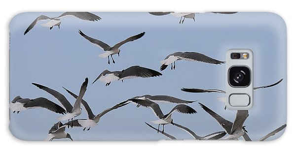 Flying Gulls  Galaxy Case