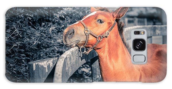 Foal By The Fence Galaxy Case