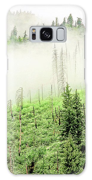 Fog And Trees Galaxy Case