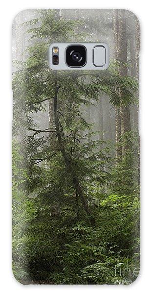Foggy Woods Galaxy Case