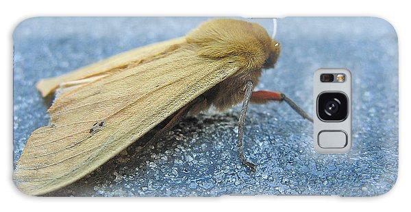 Fokker Moth Galaxy Case