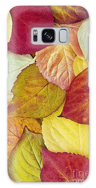 Foliage Quilt Galaxy Case by Alan L Graham