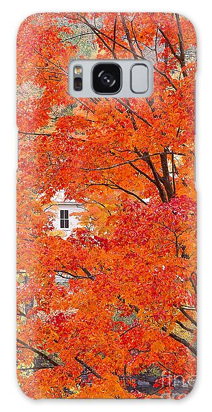 Foliage Window Galaxy Case by Alan L Graham