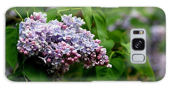 For The Love Of Lilac Galaxy Case by Living Color Photography Lorraine Lynch