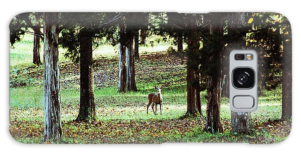Forest Buck Galaxy Case by Lorna Rogers Photography