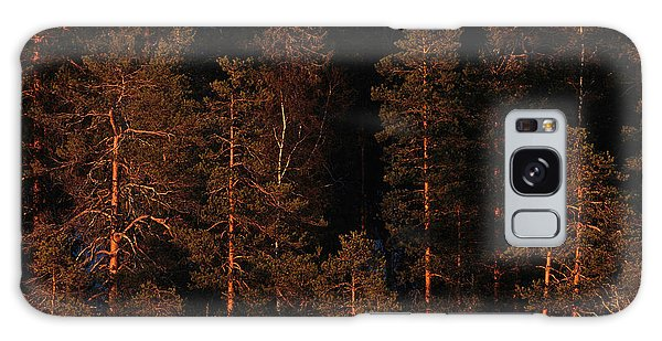 Boreal Forest Galaxy Case - Forest Sunset, Russia by Peter Essick