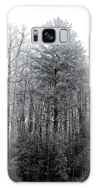 Forest With Freezing Fog Galaxy Case