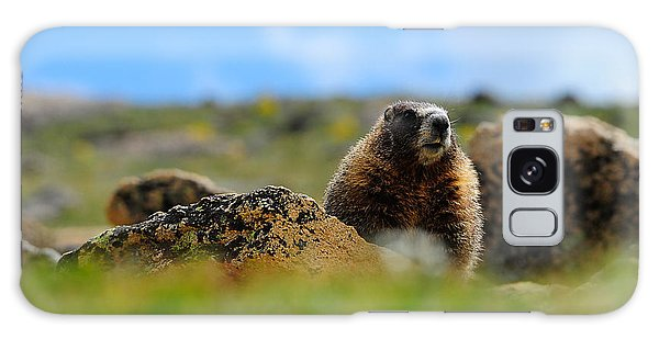 Fort Marmot Galaxy Case