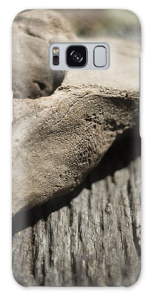 Fossil Bone With Weathered Wood Galaxy Case by Rebecca Sherman