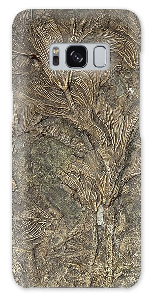 Sea Lily Galaxy Case - Fossil Crinoids by George Bernard/science Photo Library