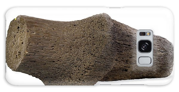 Desert Flora Galaxy Case - Fossilised Wood by Natural History Museum, London/science Photo Library