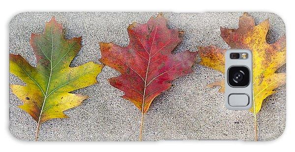 Four Autumn Leaves Galaxy Case