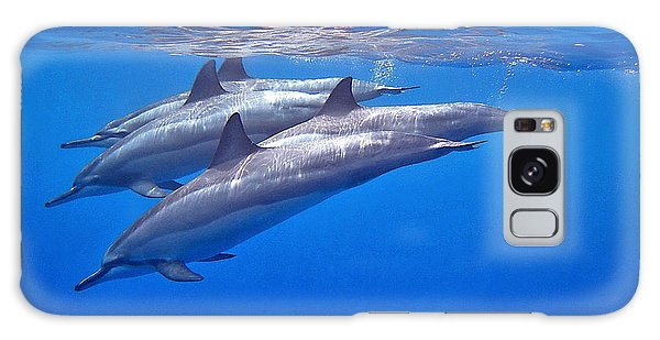 Four Spinner Dolphins Galaxy Case