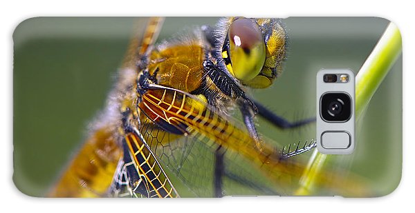 Four Spotted Chaser Galaxy Case