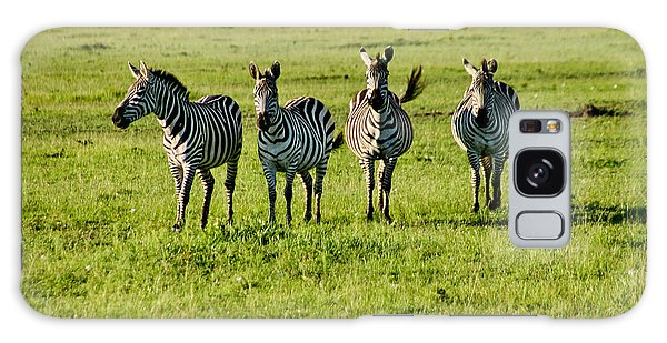 Four Zebras Galaxy Case by Menachem Ganon
