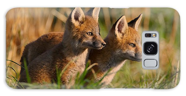 Fox Cubs At Sunrise Galaxy Case