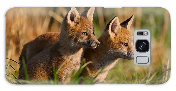 Fox Cubs At Sunrise Galaxy Case