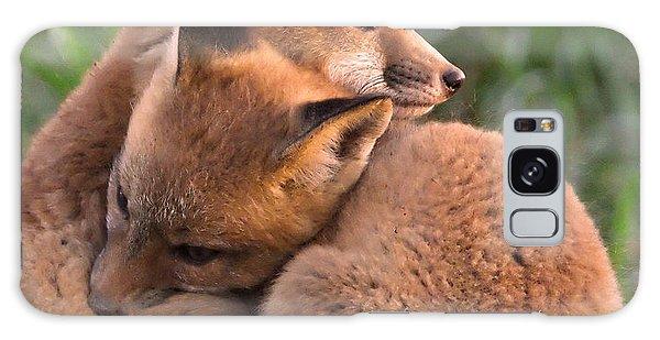 Fox Cubs Cuddle Galaxy Case
