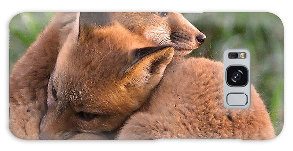 Fox Cubs Cuddle Galaxy Case